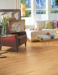 Armstrong Hardwood Floors special at Korkmaz, Provincial Plus Strip collection